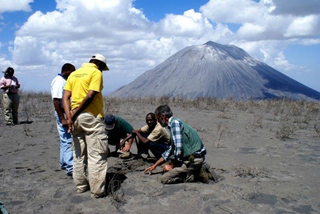 Stunning discovery: Hundreds of ancient footprints found near African volcano