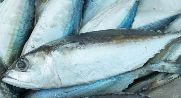 The key to saving the world's fish stocks? You may be surprised