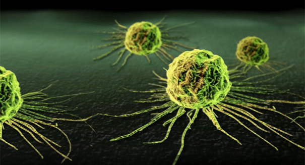 A new gene therapy to kill cancer cells?