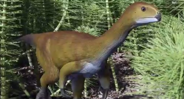 Huge dinosaur discovery stuns scientists