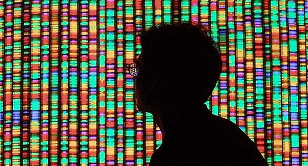 Scientists discuss secret project to synthesize human genome