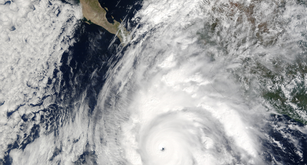 Hurricane Maria did something terrible for science