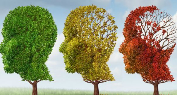 Researchers question reliability of Alzheimer's blood test