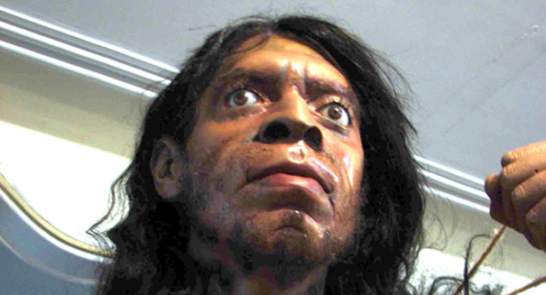 Neanderthals and humans made out … yes, really