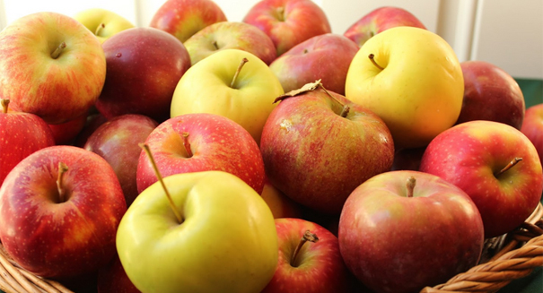 Apples reign supreme as kids' favorite fruit