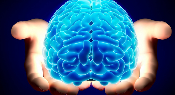 Huge discovery about brains shocks scientists