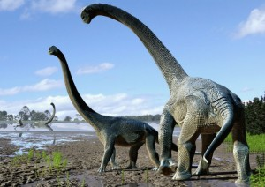 Stunning discovery on how long dinosaurs really took to hatch
