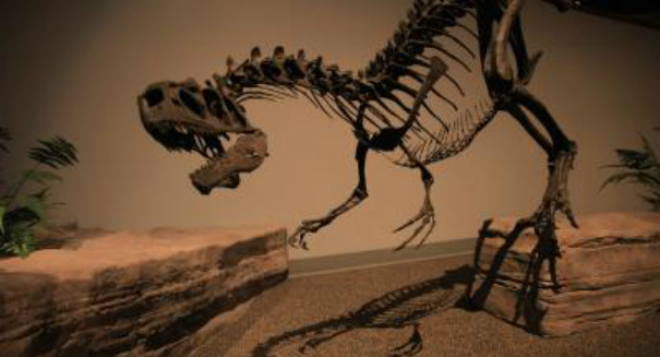 Scientists stunned by astonishing T-rex discovery