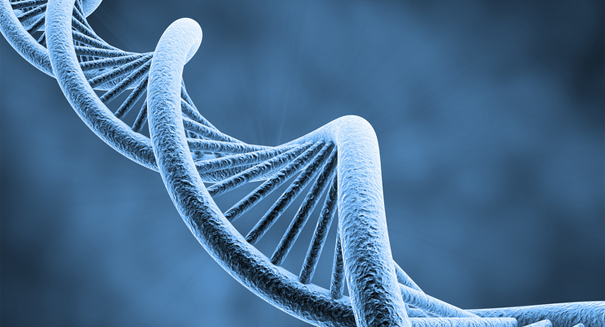 Scientists amazed after capturing supercoiled DNA with 3D imaging