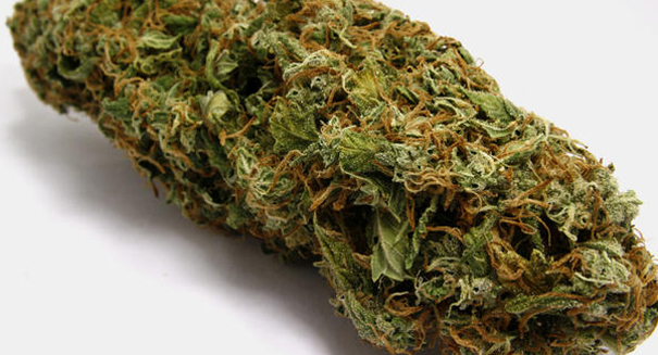 New study links marijuana use with poor memory function