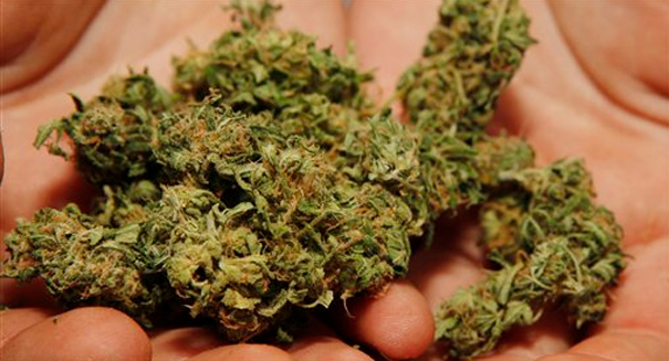 Huge marijuana study has major breakthrough