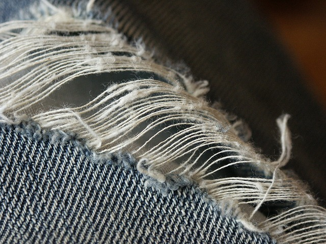 Amazing invention: Self-mending clothes inspired by squid protein